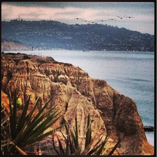 A view of Torrey Pines in San Diego on Aug. 6, 2013.