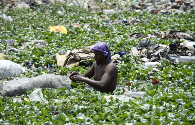 A man picks plants in a river to feed the cattle in 'La Reunionkely' area in Antananarivo ahead of the presidential elections on October 25, 2013. Thirty-three candidates are running in a poll that is meant to end a four-year political crisis on the Indian Ocean island sparked when strongman Andry Rajoelina ousted then-president Marc Ravalomanana in a coup. But supporters are divided over new candidates after Rajoelina and Ravalomanana's wife Lalao, along with a few others, were barred from running under international pressure. After the presidential polls, a parliamentary vote will follow on December 20, along with a second presidential round if the October election does not deliver an outright winner. Madagascar votes on October 25 in long-delayed elections meant to pull the island nation out of a devastating political crisis that plunged millions into misery after the 2009 coup. (Stephane De Sakutin/Getty Images)