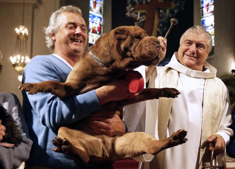Gil Florini (R), priest of Saint-Pierre-d'Arene's church, blesses a dog on October 6, 2013 during a mass for animals in the southeastern French city of Nice. (Valery Hache/AFP)