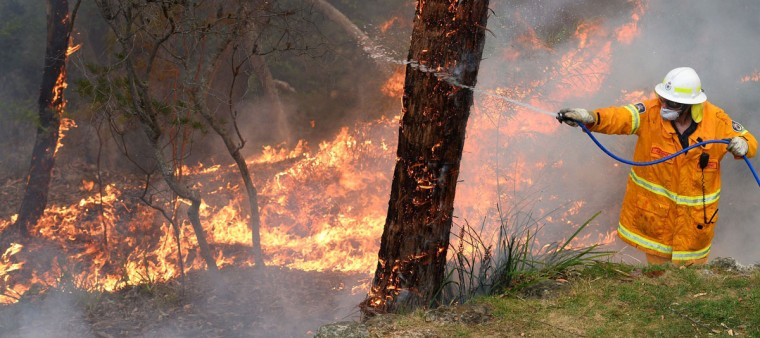 A firefighter hoses a tree as teams work to contain fires from a resident's backyard at Faulconbridge in the Blue Mountains on October 22, 2013. Firefighters on October 22 deliberately merged two major blazes in southeastern Australia in a desperate battle to manage the advancing infernos as weather conditions worsen. (William West/AFP/Getty Images)