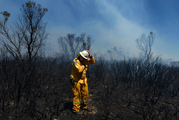 A volunteer firefighter holds onto his helmet in the strong winds as he surveys the damage in the Mt. York fire area near Mt. Victoria in the Blue Mountains, roughly 150 kms west of Sydney, on October 23, 2013. As the crisis entered its seventh day, at least 65 fires were raging across the state of New South Wales with 18 of them uncontained and warnings again issued for people to leave their homes or be extra vigilant. (William West/AFP/Getty Images)