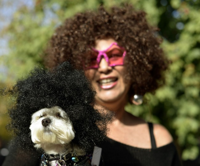 Ilene Zeins and ZiZi participate in the Tompkins Square Park 23rd Annual Halloween Dog Parade on October 26, 2013 in New York City. (Timothy Clary/AFP/Getty Images)