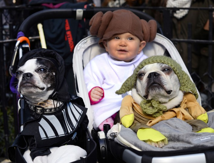 "Dogs and baby dressed as characters from ""Star Wars"" attend the 23rd Annual Tompkins Square Halloween Dog Parade on October 26, 2013 in New York City. Thousands of spectators gather in Tompkins Square Park to watch hundreds of masquerading dogs in the countrys largest Halloween Dog Parade. (Timothy Clary/AFP/Getty Images)"