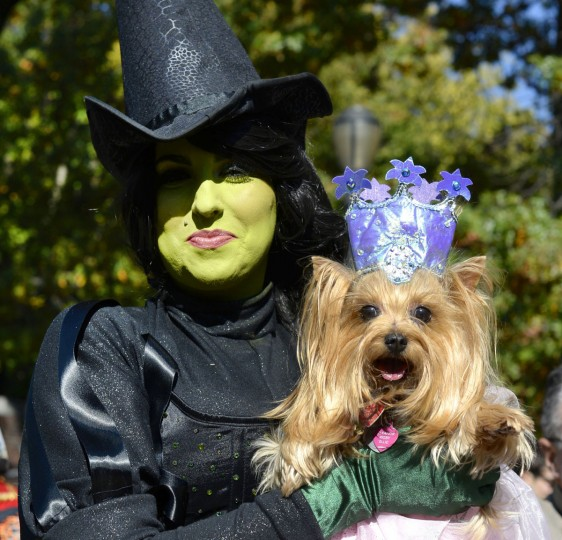 "Minnie and her dog Elanor dressed as the ""Good Witch"" and ""Bad Witch"" from the Wizard of Oz participate in the 23rd Annual Tompkins Square Halloween Dog Parade on October 26, 2013 in New York City. Thousands of spectators gather in Tompkins Square Park to watch hundreds of masquerading dogs in the countrys largest Halloween Dog Parade. (Timothy Clary/AFP/Getty Images)"