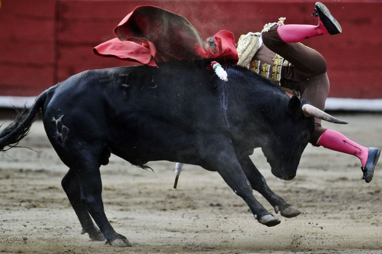 "Mexican bullfighter Juan Pablo Llaguno performs during the ""Senor de los Milagros"" festival at the Acho bullring in Lima. (ERNESTO BENAVIDES / AFP/Getty Images)"