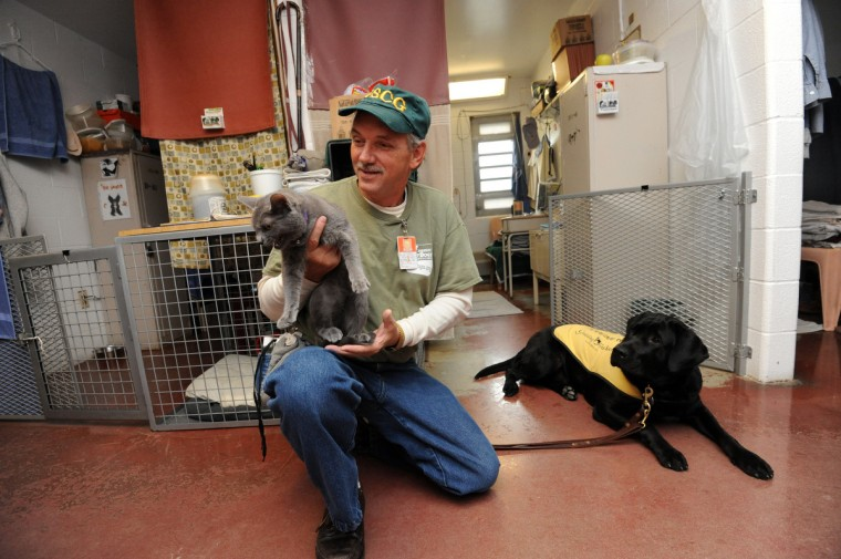 Kent Brewer, 61, holds Stormy, a cat, as Trooper, a future service dog, looks on. Brewer is one of several incarcerated veterans and other prisoners training service dogs for wounded service people at Maryland Correctional Institution-Hagerstown. (Kim Hairston/Baltimore Sun)