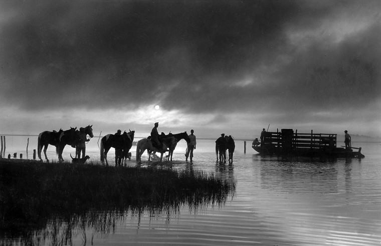 In a timeless image, a group of men and their horses - accompanied by a dog or two - gather in the dawn light at Chincoteague Island, Va., in Nov. 1948. (Hans Marx/Baltimore Sun)