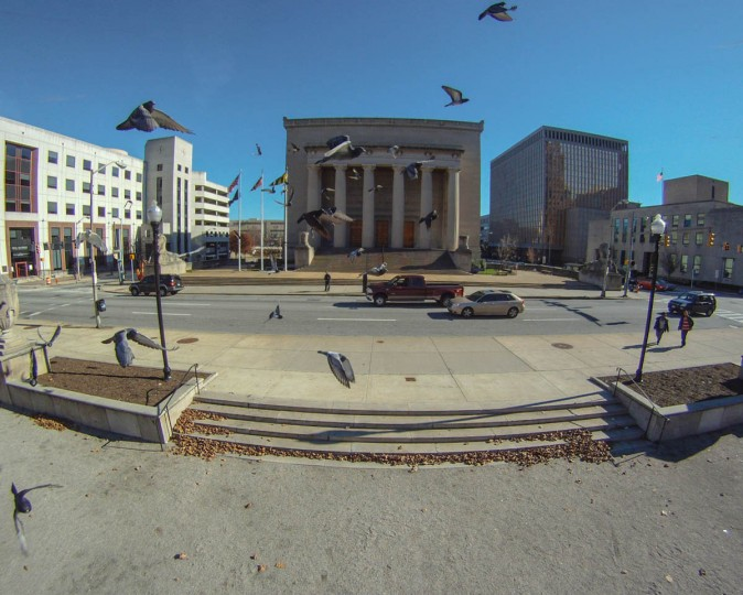 "A birds-eye view of pigeons in flight near City Hall. ""Birds are always attracted to the sound of the multicopter,"" says Terry Kilby. ""I have some interesting footage of close, face-to-face encounters with sparrows."" (Photo courtesy of Elevated Element)"