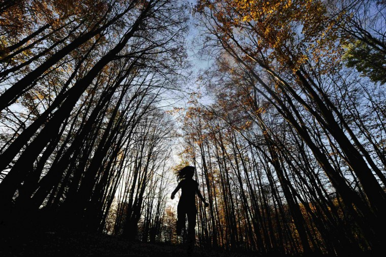 A girl walks through the forest during a warm autumn day in the village of Mavrovo.(Ognen Teofilovski/Reuters)