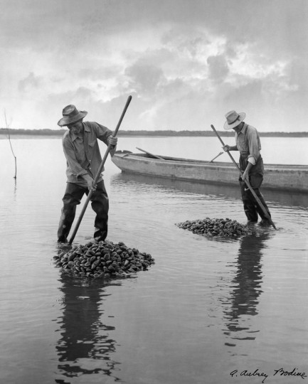 All from Bodine's Industry: The Dignity of Work. Raking Clams, 1948 (Plate 030) photo by A. Aubry Bodine.