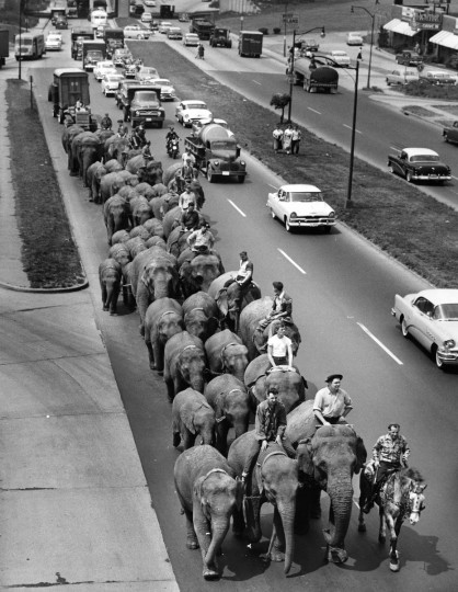 The Ringling Bros. and Barnum & Bailey was in town in May 1956, bringing elephants and an assortment of handlers parading down Pulaski Highway. (Ellis Malashuk/Baltimore Sun)