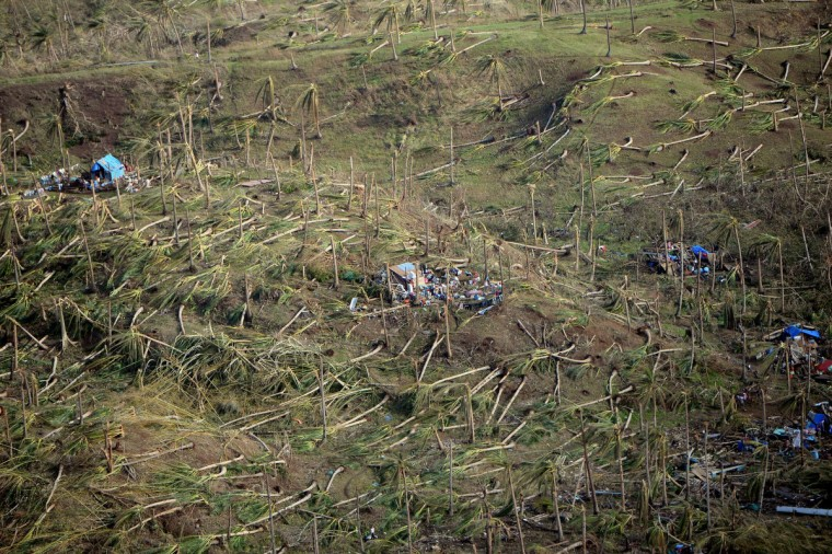 This aerial photo shows uprooted coconut trees and destroyed homes near the town of Guiuan in Eastern Samar province in the central Philippines on November 11, 2013 only days after Super Typhoon Haiyan devastated the town on November 8. Philippines rescue workers struggled to bring aid to famished and destitute survivors on November 11 after the super typhoon that may have killed more than 10,000 people, in what is feared to be the country's worst natural disaster. (Ted Aljibe/Getty Images)