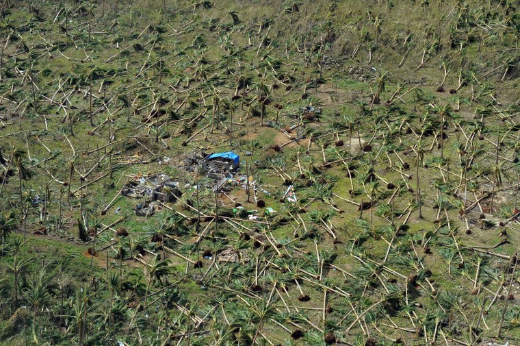 This aerial photo shows uprooted coconut trees on a hill near the town of Guiuan in Eastern Samar province in the central Philippines on November 11, 2013 only days after Super Typhoon Haiyan devastated the town on November 8. Philippines rescue workers struggled to bring aid to famished and destitute survivors on November 11 after the super typhoon that may have killed more than 10,000 people, in what is feared to be the country's worst natural disaster. (Ted Aljibet/AFP/Getty Images)