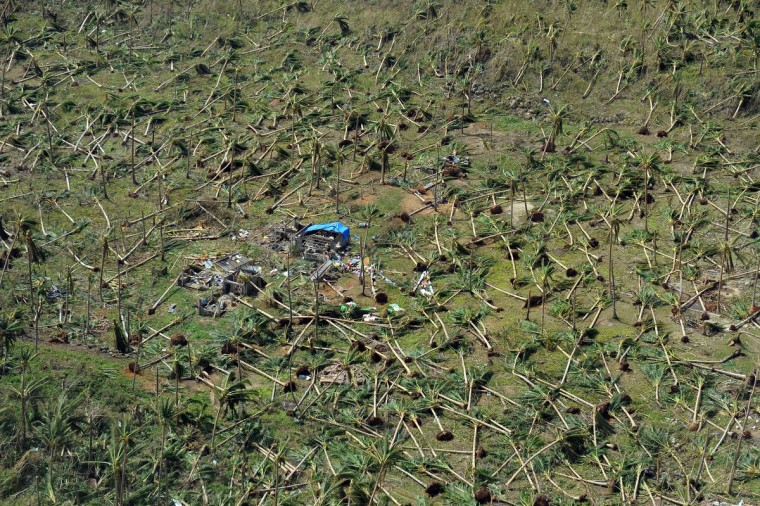 This aerial photo shows uprooted coconut trees on a hill near the town of Guiuan in Eastern Samar province in the central Philippines on November 11, 2013 only days after Super Typhoon Haiyan devastated the town on November 8. Philippines rescue workers struggled to bring aid to famished and destitute survivors on November 11 after the super typhoon that may have killed more than 10,000 people, in what is feared to be the country's worst natural disaster. (Ted Aljibe/Getty Images)