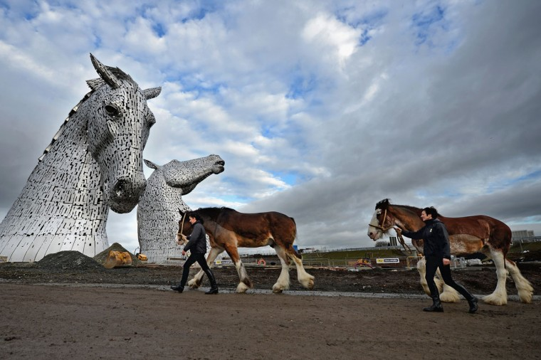 Donna Auchinvole with Duke and Lorraine Clark with Barron, Clydesdale Horses, attend a topping out ceremony at The Kelpies on November 27, 2013 in Falkirk, Scotland. Construction work has been completed on Andy Scott's Kelpies, the world's largest pair of equine sculptures and one of the UKs tallest pieces of public art. The 30 metre tall Kelpies have cost £5million to complete and play a central role in the £43 million, 350-hectare Helix land transformational project between Falkirk and Grangemouth. (Jeff J Mitchell/Getty Images)