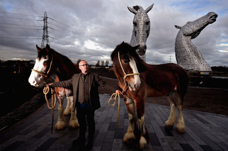 Andy Scott stands with Clydesdale Horses Duke and Baron during a topping out ceremony at The Kelpies on November 27, 2013 in Falkirk, Scotland. Construction work has been completed on Andy Scott's Kelpies, the world's largest pair of equine sculptures and one of the UKs tallest pieces of public art. The 30 metre tall Kelpies have cost £5million to complete and play a central role in the £43 million, 350-hectare Helix land transformational project between Falkirk and Grangemouth. (Jeff J Mitchell/Getty Images)