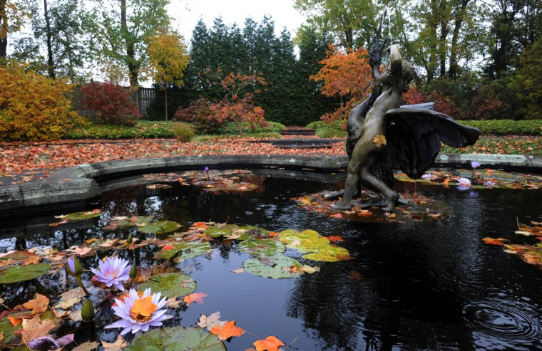 Autumn colors mix with the already vivid hues of the lilies on display in the Water Lily Garden at Ladew Topiary Gardens. (Kim Hairston/Baltimore Sun)