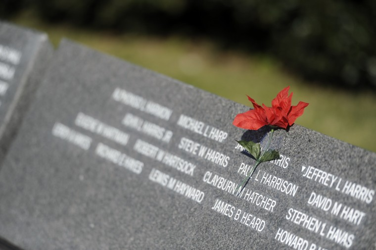 This is a silk flower which was placed over the name of James L. Harris of Baltimore, who was killed in 1968. His sister, Gloria Bailey of Baltimore, placed the flower after a Veterans Day remembrance at the Vietnam Veterans of Maryland Memorial. (Barbara Haddock Taylor/Baltimore Sun)