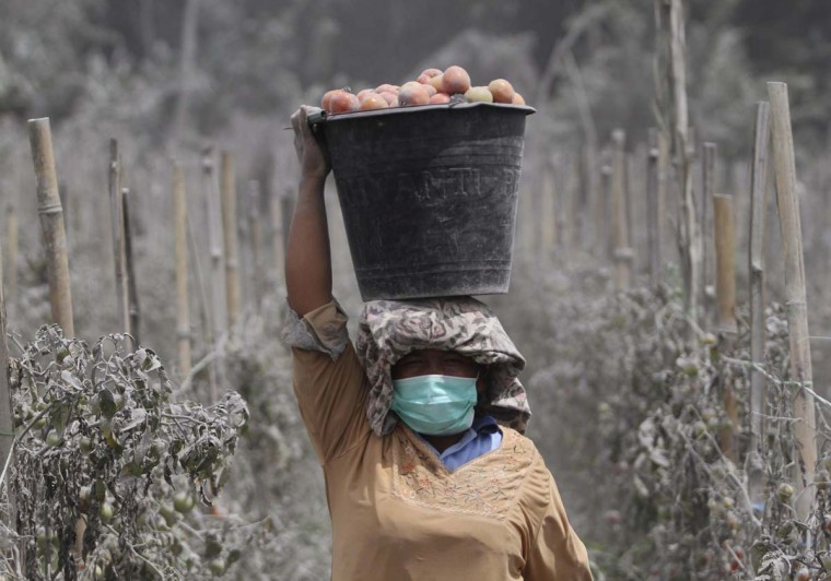 A woman carries a bucket full of ash-covered tomatoes on her head, at Mardingding village shortly after Mount Sinabung spewed volcanic ash in Karo district, Indonesia's north Sumatra province November 18, 2013. The volcano continued to emit volcanic ash on Monday, throwing an 8,000m (26,247 ft)-high plume into the atmosphere, as thousands of residents fearful of more eruptions remained in temporary shelters, according to local media. (Roni Bintang/Reuters)