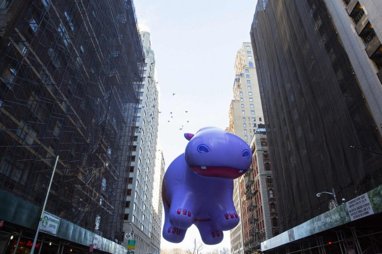 The Happy the Hippo balloon floats down Sixth Avenue during the 87th Macy's Thanksgiving Day Parade in New York. (REUTERS/Eric Thayer)