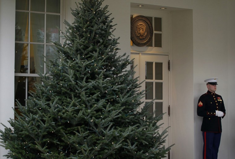 As a Christmas tree is seen in the foreground, a Marine stands guard outside the West Wing of the White House December 4, 2013 in Washington, DC. U.S. first lady Michelle Obama will host military families for the first viewing of the 2013 holiday decorations and demonstrating holiday crafts and treats to military children. (Alex Wong/Getty Images)