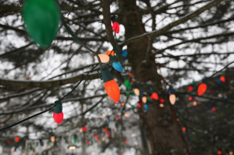Christmas lights adorn a tree near the former site of Sandy Hook Elementary school on December 14, 2013 in Newtown, Connecticut. One year ago Adam Lanza shot and killed 20 first graders and six adults at the school. Newtown decided not to hold a public memorial on the anniversary out of respect for victims' survivors, and the town appealed for privacy. (John Moore/Getty Images)