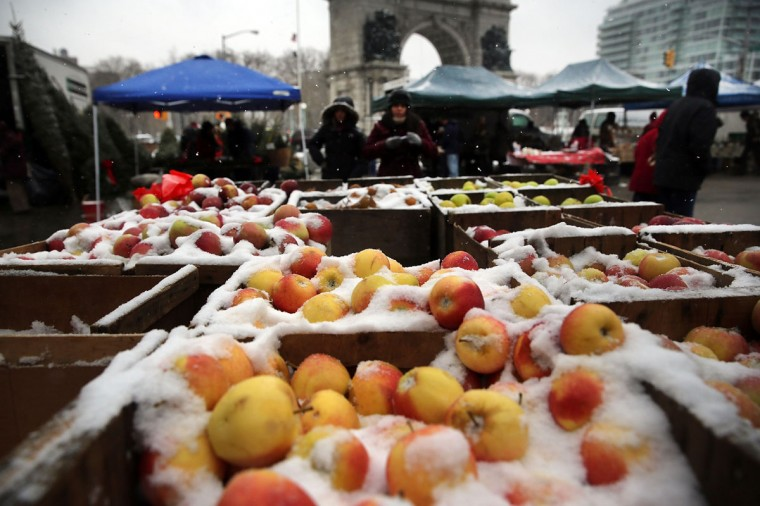 Apples covered with snow are viewed for sale in a market during a snow storm on December 14, 2013 in Brooklyn. (Spencer Platt/Getty Images)