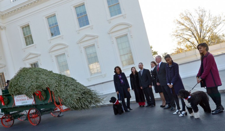 First Lady Michelle Obama (L), daughters Malia (R) and Sasha (2nd R), dogs Bo and Sunny(L) welcome the Official White House Christmas Tree to the White House November 29, 2013 in Washington, DC. This years White House Christmas Tree, which will be on display in the Blue Room, is an 18.5-foot