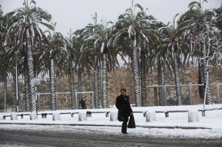 A woman walks near palm trees as snow falls outside Jerusalem's old city on December 12, 2013. (MENAHEM KAHANA / AFP/Getty Images)
