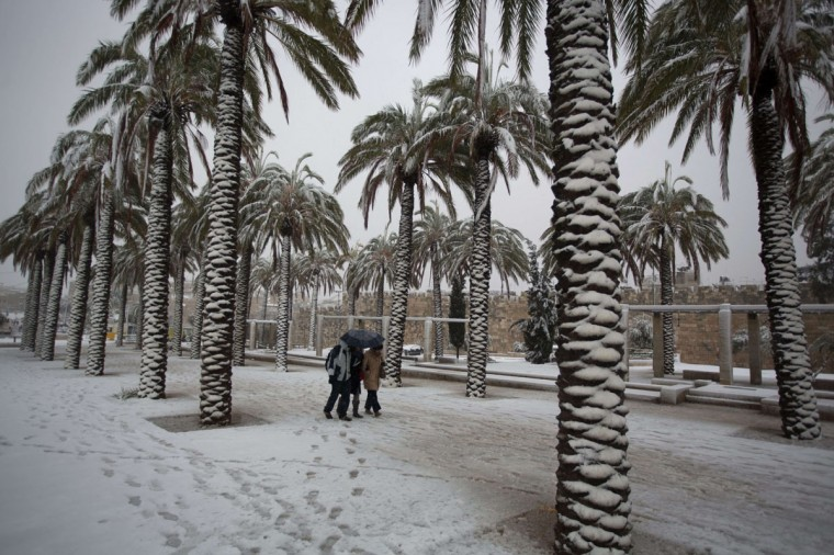 People walk near palm trees as snow falls outside Jerusalem's old city on December 12, 2013. (MENAHEM KAHANA / AFP/Getty Images)