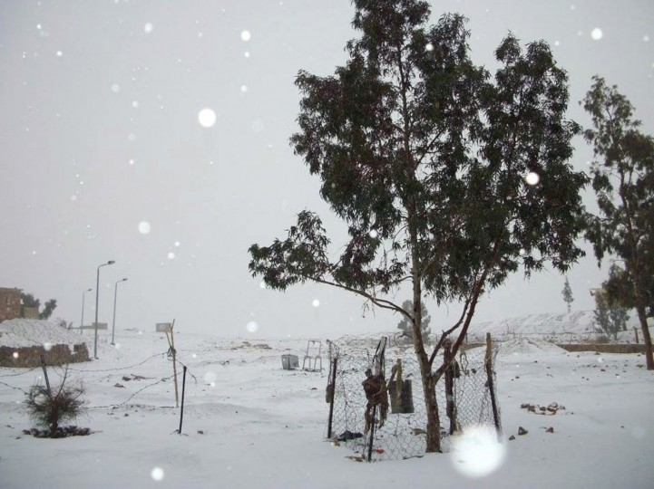 Snow covers the scene in Egypt's Sinai Peninsula, some 400 kms south-east of Cairo on December 13, 2013. (STR/AFP/Getty Images)