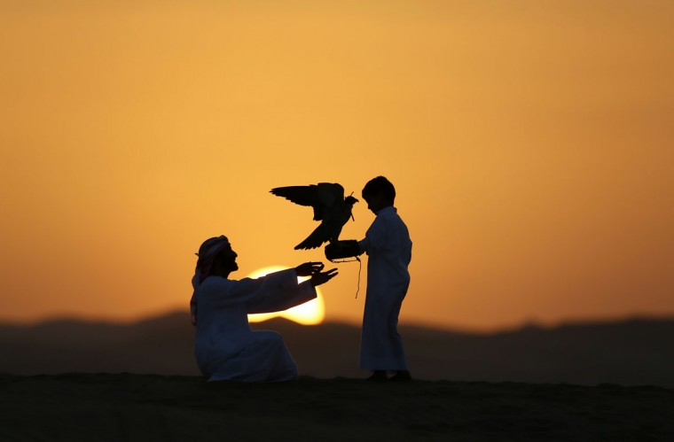 Emirati Mohammed Rakan Bin Harwon Al-Qubassiy (L) hands his falcon to a boy at the Liwa desert, 220 kms west of Abu Dhabi, on the sidelines of the Mazayin Dhafra Camel Festival on December 21, 2013. The festival, which attracts participants from around the Gulf region, includes a camel beauty contest, a display of UAE handcrafts and other activities aimed at promoting the country's folklore. (Karim Sahib/AFP/Getty Images)