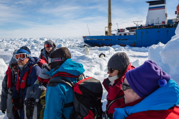 This image taken by expedition doctor Andrew Peacock of www.footloosefotography.com on January 2, 2014 shows a pair of Adelie penguins (C) inspecting the scene as the first load of passsengers (foreground) from the stranded Russian ship MV Akademik Shokalskiy (back R) wait for a helicopter from the nearby Chinese icebreaker Xue Long to pick them up as rescue operations take place after over a week of being trapped in the ice off Antarctica. The helicopter mission to rescue 52 passengers trapped on the icebound Russian research ship finally got underway in Antarctica on January 2 after a number of false starts and failed icebreaking attempts. It was expected to take at least five hours to ferry all passengers from the icebound vessel to the Xue Long -- 10 nautical miles distant -- by helicopter, with five flights of up to 12 passengers and a return journey taking 45 minutes. The ship is carrying scientists and tourists who are following the Antarctic path of explorer Douglas Mawson a century ago, details of which at www.spiritofmawson.com, and have been carrying out the same scientific experiments his team conducted during the 1911-1914 Australian Antarctic Expedition -- the first large-scale Australian-led scientific expedition to the frozen continent. (Andrew Peacock / www.footloosefotography.comAndrew Peacock/AFP/Getty Images)