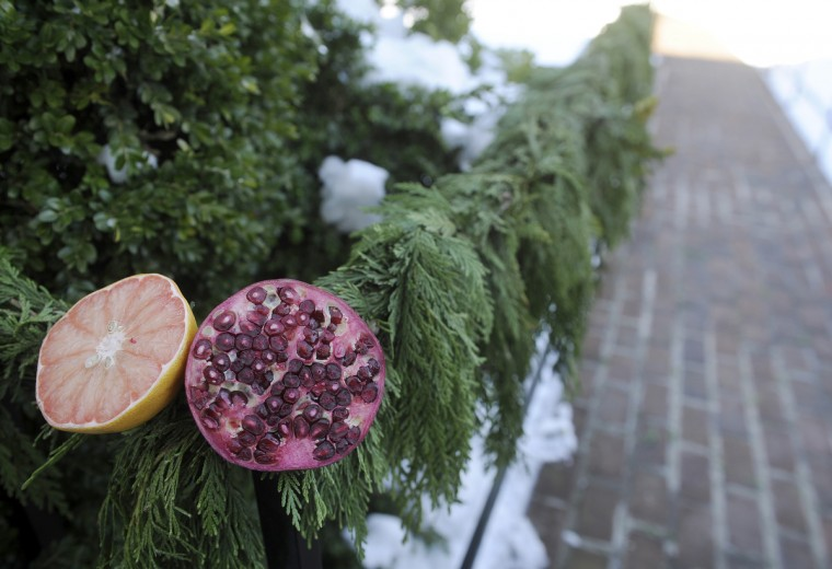 A grapefruit and pomegranate decorate a railing at the Manor House at Ladew Gardens. (Barbara Haddock Taylor/Baltimore Sun)
