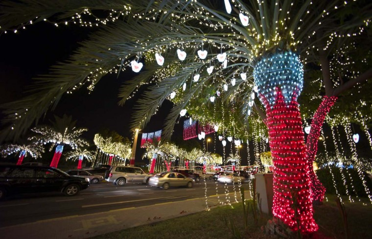 Cars drive past a street lined with decorative lights ahead of National Day celebrations in Riffa, south of Manama December 11, 2012. Bahrain will celebrate its 42nd National Day on Monday, December 16. (REUTERS/Hamad I Mohammed)