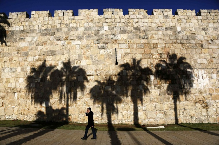 Palm trees cast their shadows on a wall surrounding Jerusalem's Old City as an Orthodox Jewish man walks past December 20, 2013. (REUTERS/Amir Cohen)