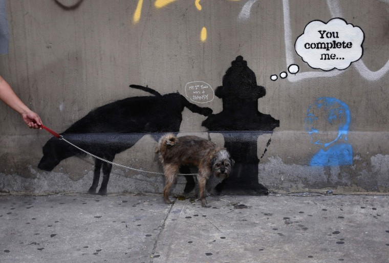 A dog urinates on a new work by British graffiti artist Banksy on West 24th street in New York City, October 3, 2013. (Mike Segar/Reuters)
