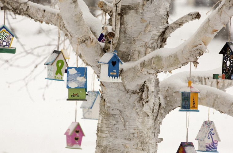 Personalized birdhouses are part of a memorial for the victims of the Sandy Hook Elementary School shooting in Newtown, Connecticut December 14, 2013 . Today marks the one year anniversary of the shooting rampage at Sandy Hook Elementary School, where 20 children and six adults were killed by gunman Adam Lanza. (REUTERS/Michelle McLoughlin)