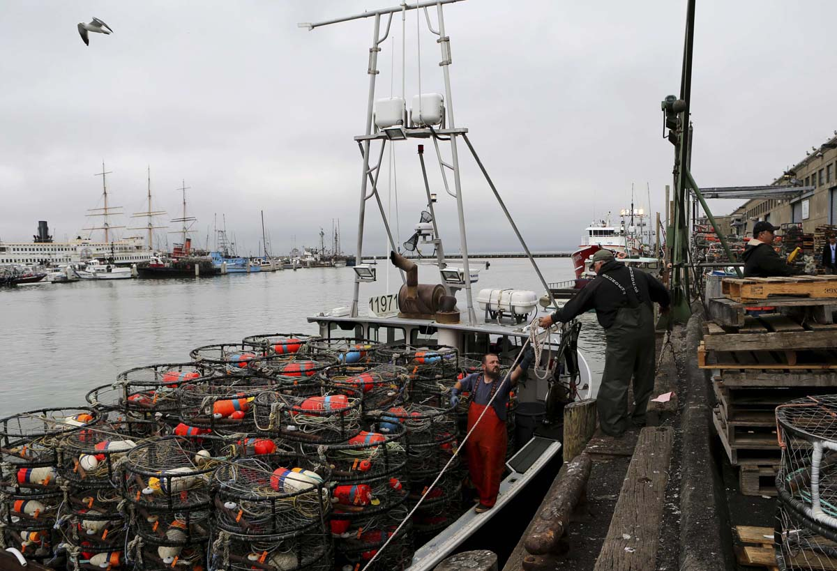 Dungeness crab season is scheduled to open Monday, December 16
