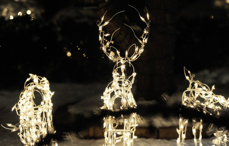 The Christmas light deer, part of Phil Hoesch's display at his parents' Cockeysville home, light up as they are coordinated with music, Thursday, Dec. 12, 2013. (Jon Sham/BSMG)
