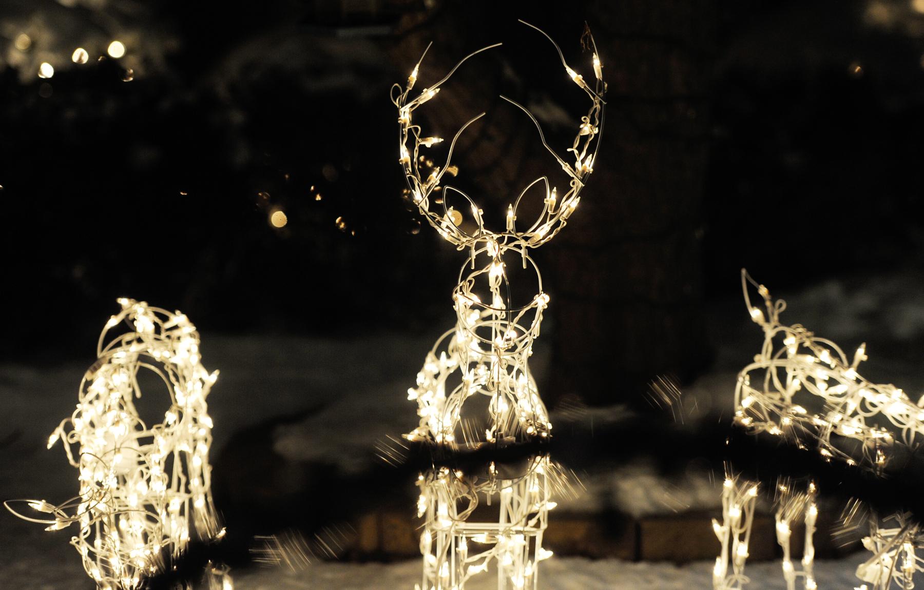 holiday lights in cockeysville
