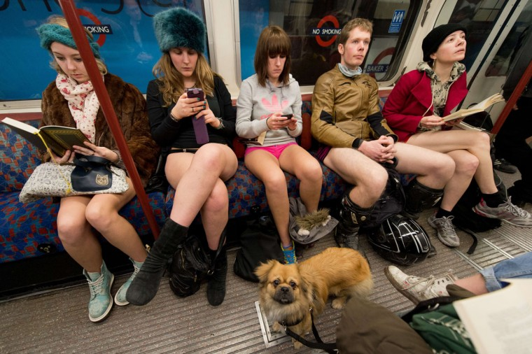 "A dog looks on as participants in the 13th annual International ""No Pants Subway Ride"" travel on a London underground train in London, on January 12, 2014. (Leon Neal/AFP Getty Images)"