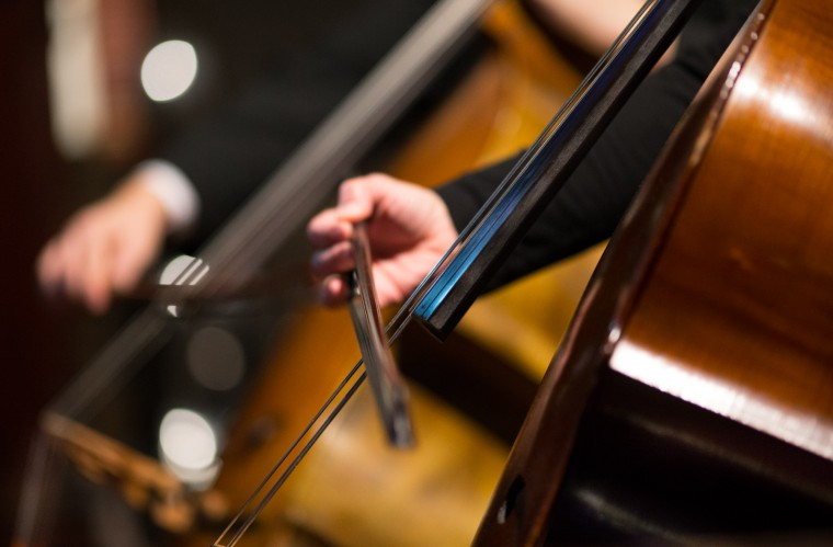 Musicians play the cello bass during the concert. (Nate Pesce/BSMG)