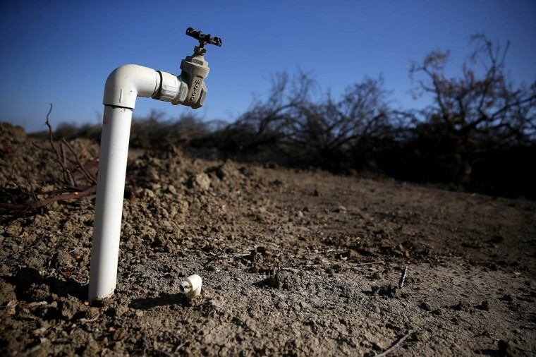 A water faucet stands next to a field of uprooted almond trees at Baker Farming on February 25, 2014 in Firebaugh, California. Almond farmer Barry Baker of Baker Farming had 1,000 acres, 20 percent, of his almond trees removed because he doesn't have access to enough water to keep them watered as the California drought continues. The U.S. Bureau of Reclamation officials announced this past Friday that they will not be providing Central Valley farmers with any water from the federally run system of reservoirs and canals fed by mountain runoff. (Justin Sullivan/Getty Images)