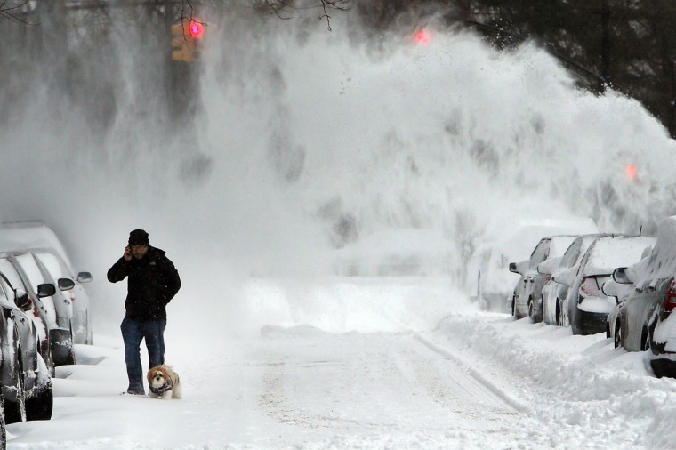A man and his dog contend with blowing snow in Brooklyn following a storm that left up to 8 inches of snow on January 3, 2014. (Photo by Spencer Platt/Getty Images)
