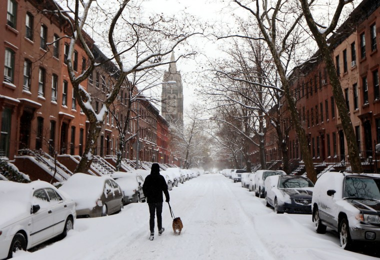 A man walks a dog down the middle of a snow-covered street during winter storm 'Hercules' on January 3, 2014 in the Brooklyn borough of New York City. (Photo by Michael Heiman/Getty Images)