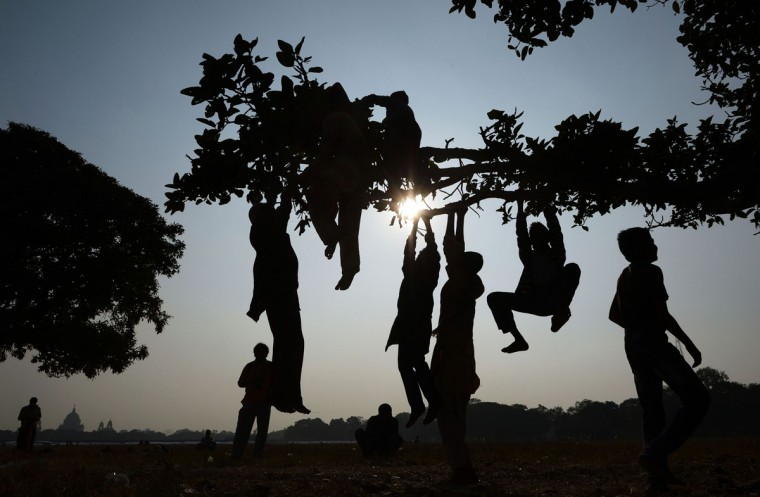 Indian children swing from a tree in the Maidan area of Kolkata on January 2, 2014. The Maidan (or open field) is the largest urban park in Kolkata and is known as the lungs of the city', stretching over more than a thousand acres. (Dibyangshu Sarkar/AFP/Getty Images )