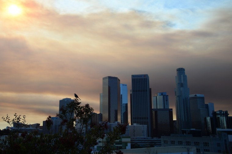 Downtown Los Angeles is shrouded in a cloud of smoke from the Colby Fire, January 16, 2014 in Los Angeles, California. The fast-moving Colby Fire, originated early today in the San Gabriel Mountains just north of Glendora, about 30 miles (48 miles) northeast of downtown Los Angeles. The fire is threatening homes and mandatory evacuations have been ordered. (Robyn Beck/AFP/Getty Images)