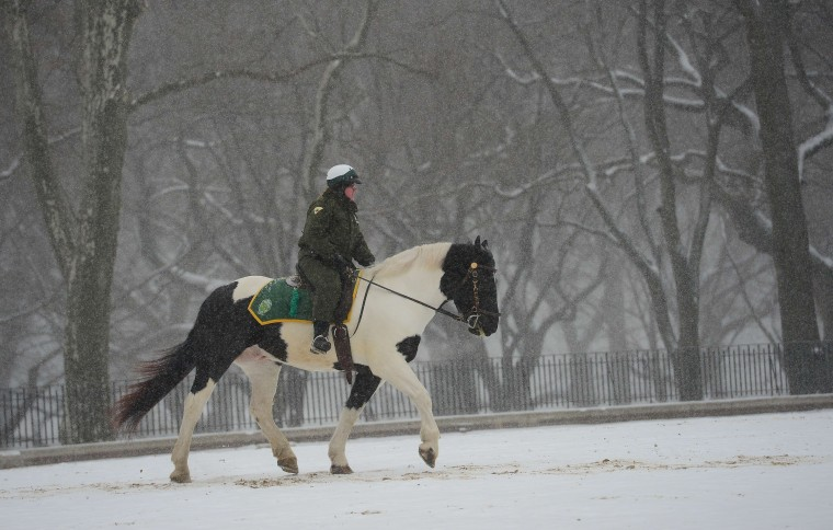 A park ranger on horse patrol during a snow storm in New York, January 22, 2014. In New York, a storm alert was issue for noon (1700 GMT) Tuesday to 6:00 am (1100 GMT) Wednesday with as much as a foot (30 centimeters) forecast for the metropolitan region. (Emmanuel Dunand/AFP/Getty Images)