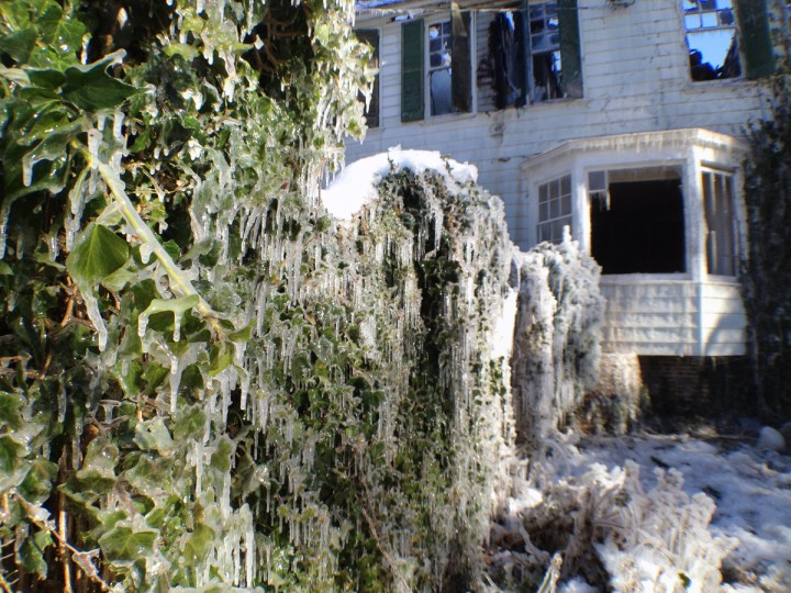 Shrubs are coated with ice a day following a 3-alarm fire that gutted a late-18th century home on St. Georges Road in the North Roland Park area. (Karl Merton Ferron/Baltimore Sun)